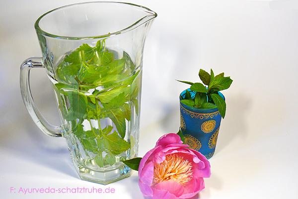 ayurvedische Rezepte: Minzwasser mit Pfefferminzblaettern