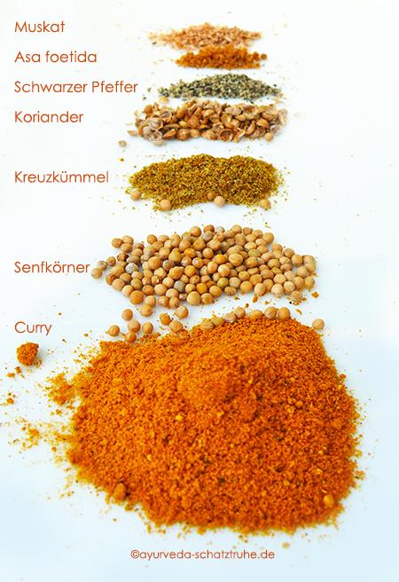 Ayurvedische Gewuerze fuer Schmorgurken-Curry