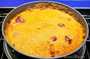 Frisch gebacken: Zwetschgen-Vanillekuchen